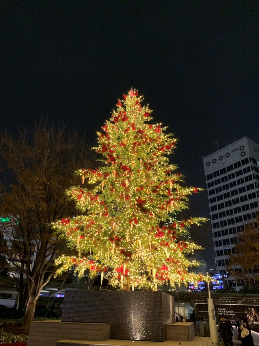 六本木ヒルズのクリスマス、新シリーズ、エイジング。